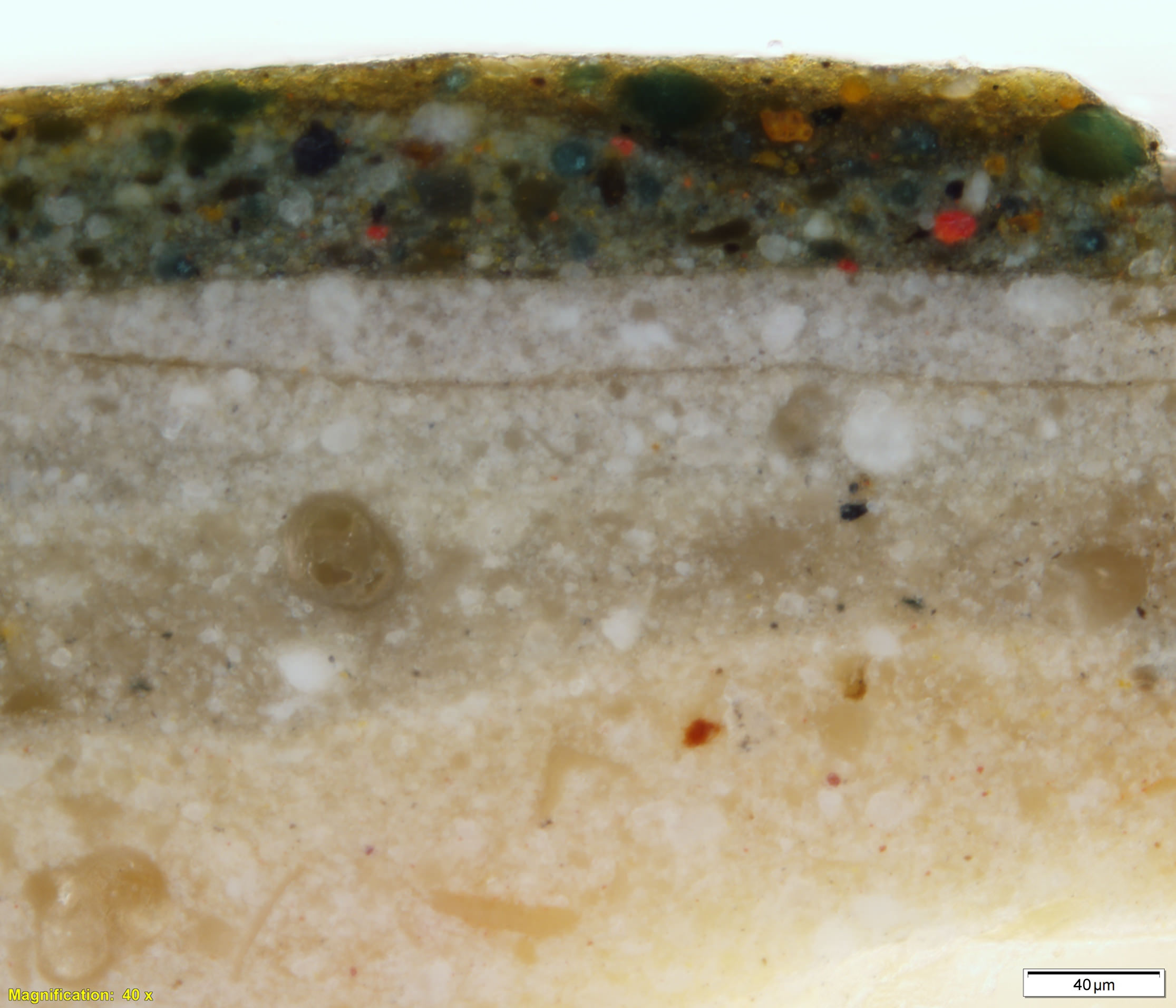 Cross-section from an area of grass