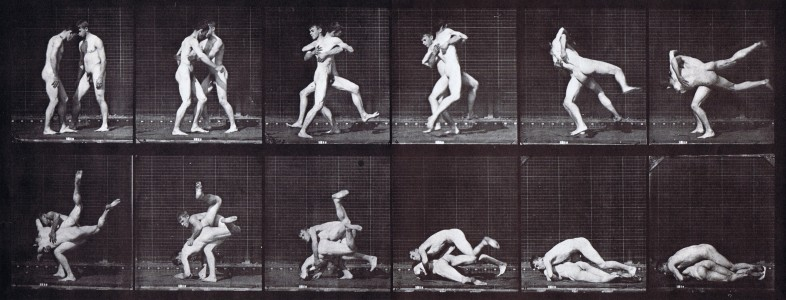 1887, collotype process. Plate from Eadweard Muybridge, <i>Animal Locomotion: An Electro-photographic Investigation of Consecutive Phases of Animal Movement. 1872–1885</i>, (Philadelphia: Published under the auspices of the University of Pennsylvania, 1887) pl. 347.