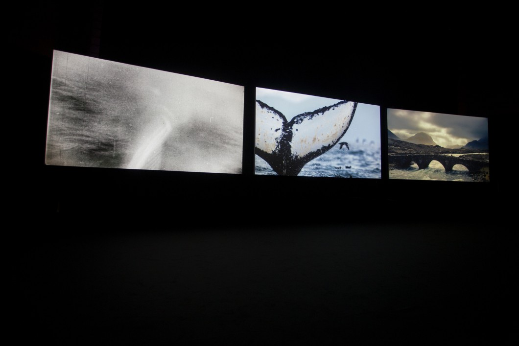 2015, three channel video installation, screened as part of <em>And the Transformation Reveals</em>, Nuit Blanche festival, Toronto, 2016.