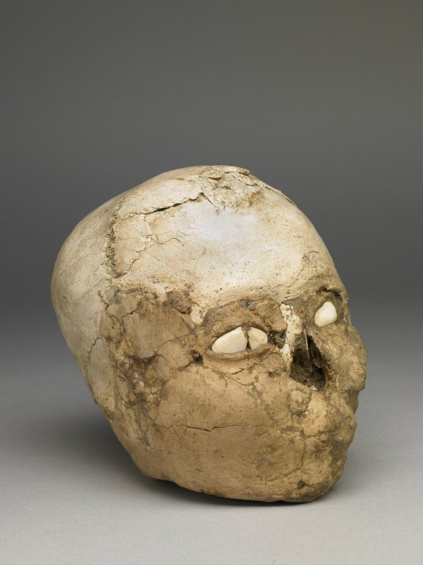 "The ""Jericho skull"": human skeletal remains"