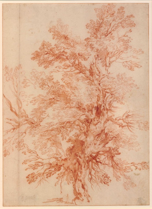 1705-1743, red chalk, 34.8 x 25.3. Collection of the British Museum.