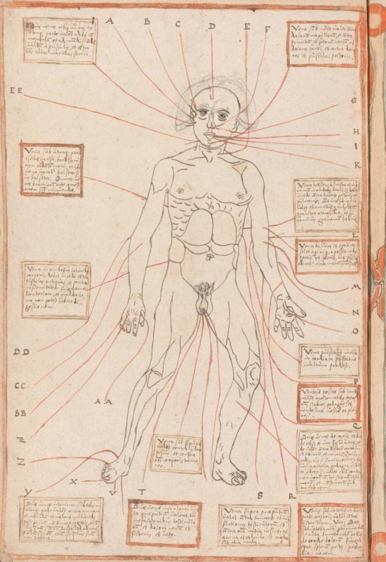 depicting a Bloodletting Figure, copied from the Fasciculus medicinae, after 1491, Austria?, 32.8 x 21.8 cm, ink on paper. Collection Österreichische Nationalbibliothek, Vienna.
