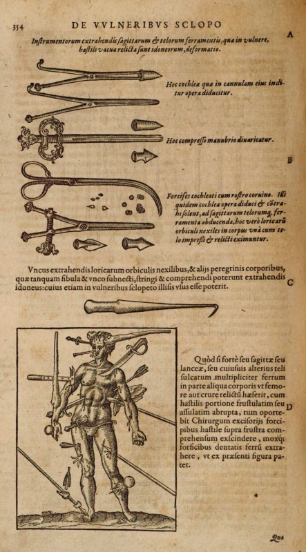 (Frankfurt, 1594), p. 354. Collection Bayerische Staatsbibliothek, Munich, (999/4Med.8).